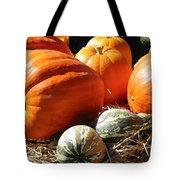 Autumn Study Tote Bag