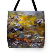 Autumn Voyage Tote Bag