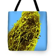 Bacteria On Sorghum Root Tip Tote Bag