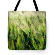 Barley, Co Down Tote Bag