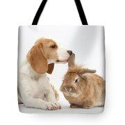 Beagle Pup And Rabbit Tote Bag