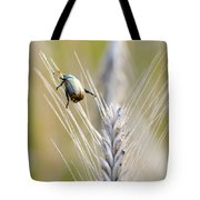 Beetle On The Wheat Tote Bag