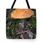 Birch Bolet Tote Bag