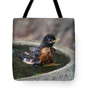 Bird Bath Fun Time Tote Bag