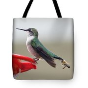 Birds And Bee's Tote Bag
