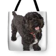 Black Bichon-cocker Spaniel Dog Tote Bag
