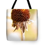 Black-eyed Susan After The Winter Tote Bag