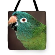 Blue Crowned Conure Tote Bag