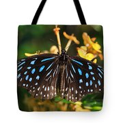 Blue Glassy Tiger Butterfly Tote Bag