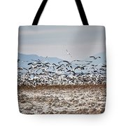 Bombay Beach Birds Tote Bag
