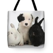 Border Collie Pups With Black Rabbit Tote Bag