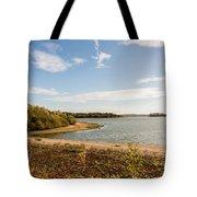 Bough Beach Tote Bag