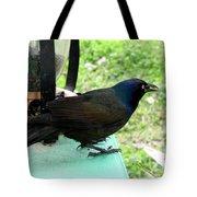 Brewers Black Bird  Tote Bag