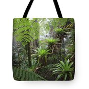 Bromeliad Bromeliaceae And Tree Fern Tote Bag by Cyril Ruoso