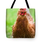 Brown Hen On A Lawn Tote Bag