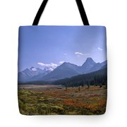 Bugaboo Valley Tote Bag