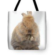 Bunny Grooming Tote Bag