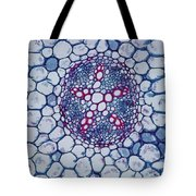 Buttercup Vascular System Tote Bag by M. I. Walker