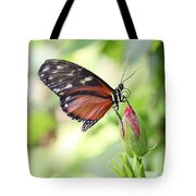 Butterfly Resting Tote Bag