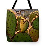 Cactus Heart In Sunset Tote Bag
