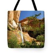 Calf Creek Falls Canyon Tote Bag