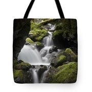 Cascading Creek In Temperate Rainforest Tote Bag