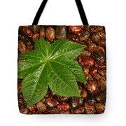 Castor Bean Leaf And Seeds Tote Bag