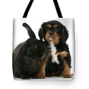 Cavalier King Charles Spaniel And Rabbit Tote Bag