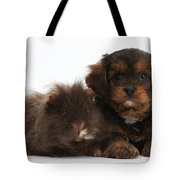 Cavapoo Pup And Shaggy Guinea Pig Tote Bag