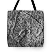 Cave Art: Vulva Tote Bag