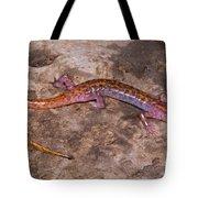 Cave Salamander Tote Bag by Dante Fenolio