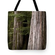 Cedar Trees, Whistler, British Columbia Tote Bag