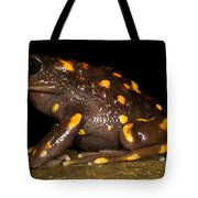 Chilean Mountains False Toad Tote Bag