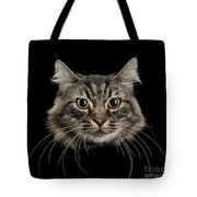 Close Up Of Cats Face Tote Bag