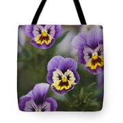 Close View Of Pansy Blossoms Tote Bag
