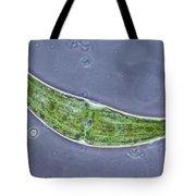 Closterium Sp. Algae Lm Tote Bag by M. I. Walker