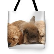 Cockerpoo Puppies And Rabbit Tote Bag