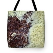Coffee Grounds 1 Tote Bag