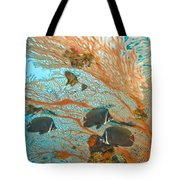Collare Butterflyfish Tote Bag