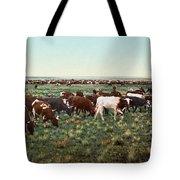 Colorado: Round Up Tote Bag