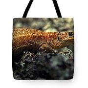 Common Lizard Tote Bag