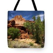 Cottonwood Castle Tote Bag