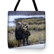 Cow Moose Tote Bag