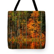 Coxsackie New York State Tote Bag