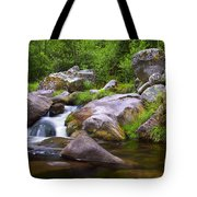 Creek Tote Bag by Carlos Caetano