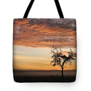 Crowned Cranes At Sunrise Tote Bag
