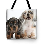 Dachshund Puppies Tote Bag
