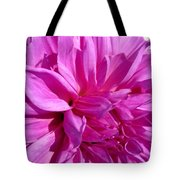 Dahlia Named Lilac Time Tote Bag