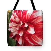 Dahlia Named Myrtle's Brandy Tote Bag