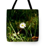 Daisy Daisy Tote Bag by Isabella F Abbie Shores FRSA